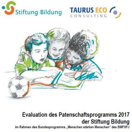 Jetzt online: Evaluationsbericht des Patenschaftsprogramms 2017